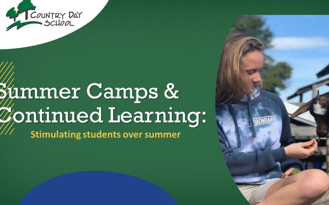 Summer Camps and Continued Learning: Stimulating Students Over Summer